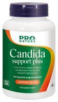 CANDIDA SUPPORT PLUS (NOW) 90 kap.
